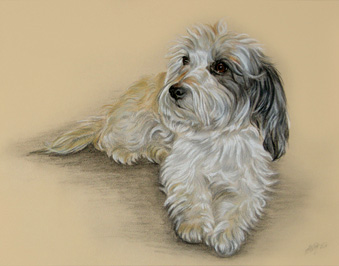 Hundeportrait in Pastell